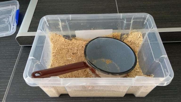 Nuestra caja de serrín pequeña